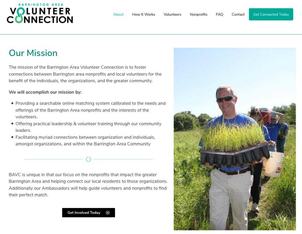 BAVC website screen shot